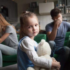 michigan child custody investigations