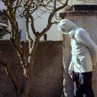 michigan undercover investigations